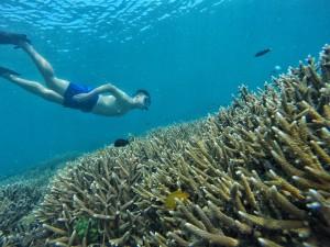 Wisata Krakatau Start Merak Open Trip Gabungan