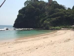 Wisata Baluran ijen Menjangan Start Surabaya