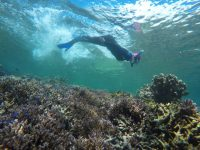 Pulau Derawan dan Labuan Cermin