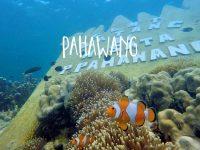 Paket Wisata Pulau Pahawang Murah
