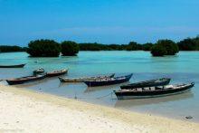 Open Trip Pahawang Dari Kota Jakarta, Solusi Liburan Pendek Dan Menyenangkan