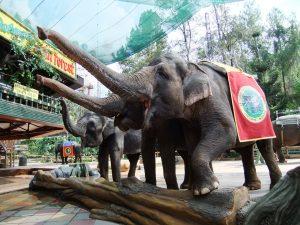 wisata sekolah taman safari