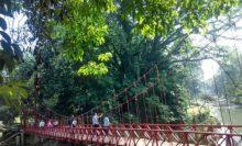 Wisata Sekolah Kebun Raya Bogor